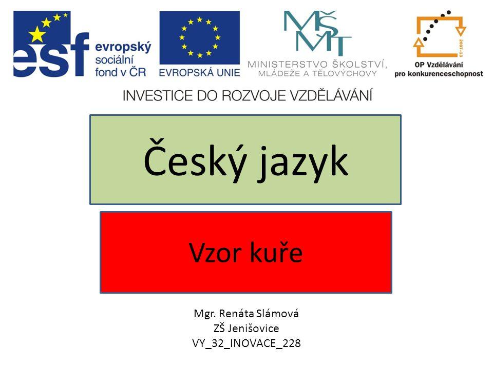 Vzor kuře Český jazyk Mgr. Renáta Slámová ZŠ Jenišovice VY_32_INOVACE_228