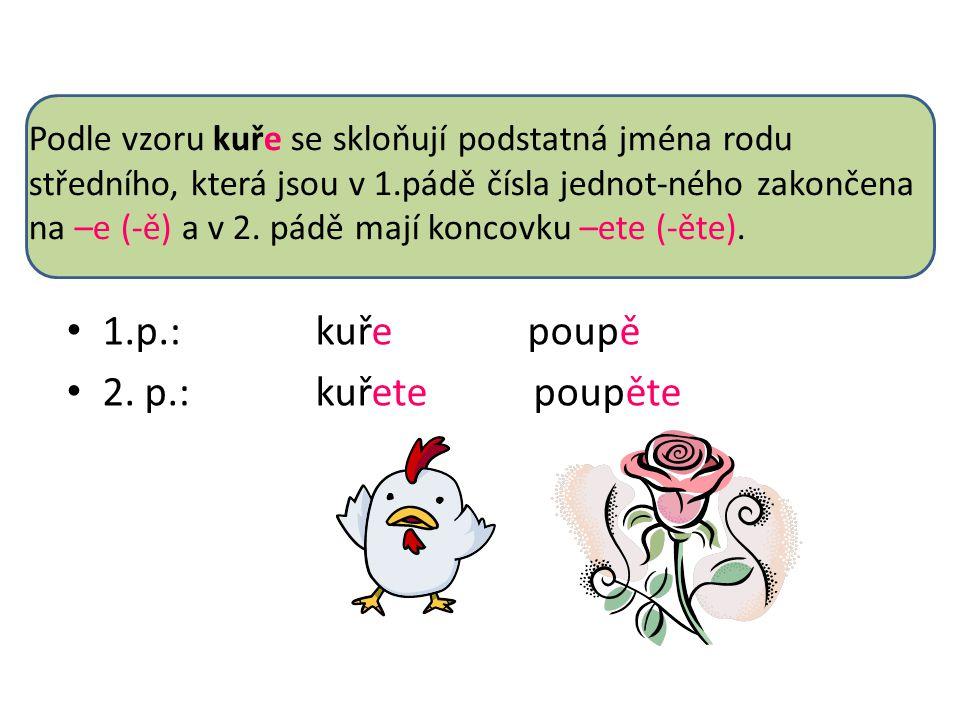 Podle vzoru kuře se skloňují podstatná jména rodu středního, která jsou v 1.pádě čísla jednot-ného zakončena na –e (-ě) a v 2.