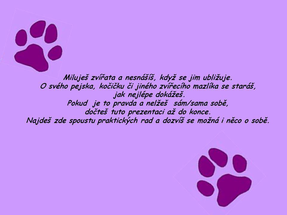 Miluješ zvířata a nesnášíš, když se jim ubližuje. O svého pejska, kočičku či jiného zvířecího mazlíka se staráš, jak nejlépe dokážeš. Pokud je to prav