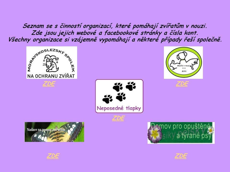 Seznam se s činností organizací, které pomáhají zvířatům v nouzi. Zde jsou jejich webové a facebookové stránky a čísla kont. Všechny organizace si vzá
