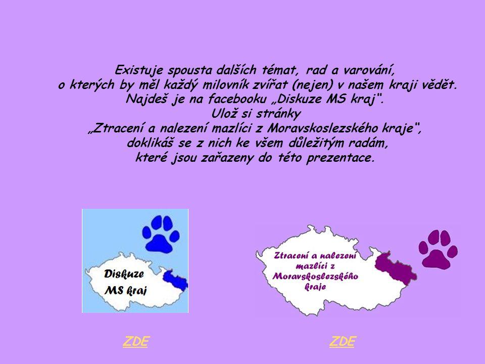 """Existuje spousta dalších témat, rad a varování, o kterých by měl každý milovník zvířat (nejen) v našem kraji vědět. Najdeš je na facebooku """"Diskuze MS"""