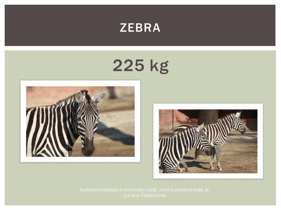 225 kg ZEBRA Autorem materiálu a všech jeho částí, není-li uvedeno jinak, je Zuzana Štěpánková
