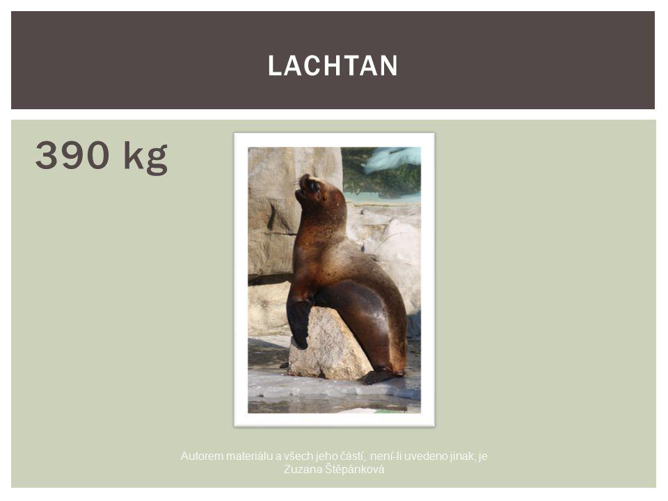 390 kg LACHTAN Autorem materiálu a všech jeho částí, není-li uvedeno jinak, je Zuzana Štěpánková
