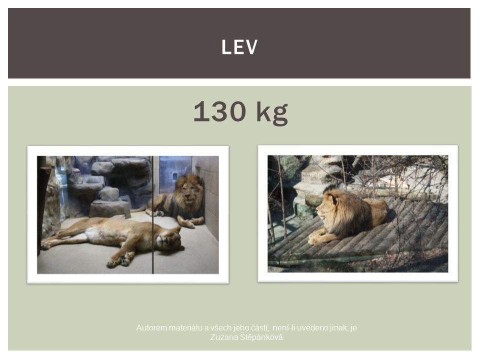 130 kg LEV Autorem materiálu a všech jeho částí, není-li uvedeno jinak, je Zuzana Štěpánková