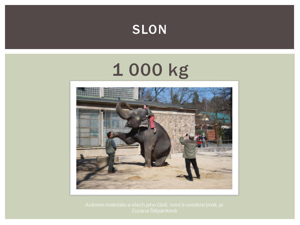 1 000 kg SLON Autorem materiálu a všech jeho částí, není-li uvedeno jinak, je Zuzana Štěpánková