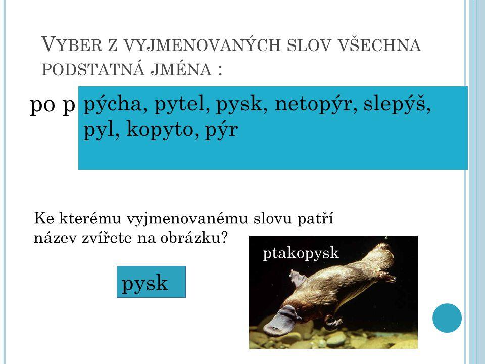 V YBER Z VYJMENOVANÝCH SLOV VŠECHNA PODSTATNÁ JMÉNA : po p pýcha, pytel, pysk, netopýr, slepýš, pyl, kopyto, pýr Ke kterému vyjmenovanému slovu patří
