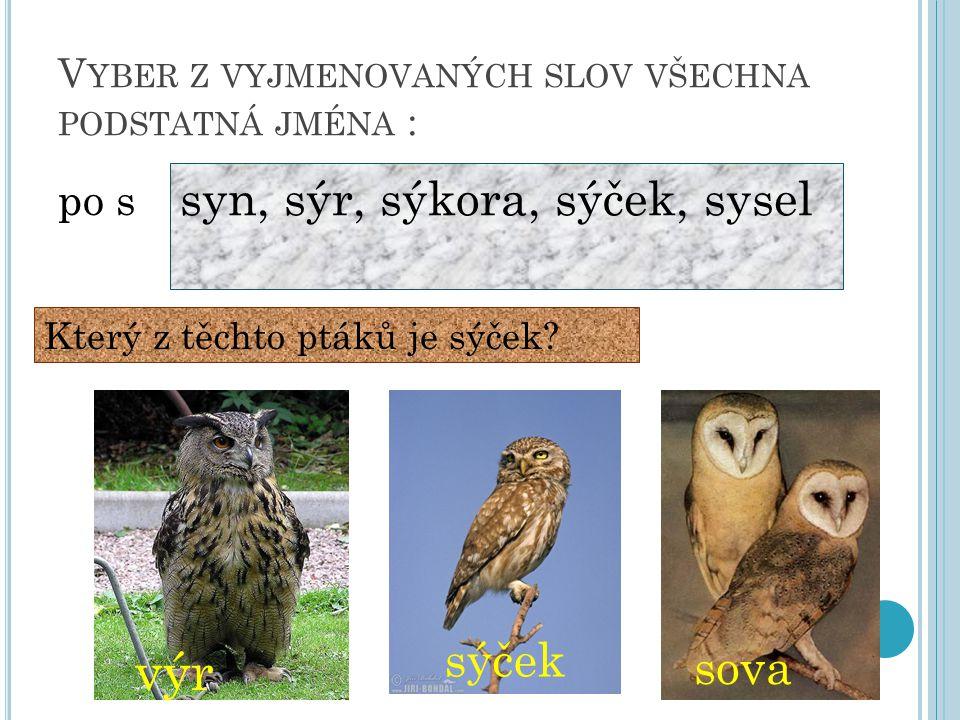 V YBER Z VYJMENOVANÝCH SLOV VŠECHNA PODSTATNÁ JMÉNA : po s syn, sýr, sýkora, sýček, sysel Který z těchto ptáků je sýček.