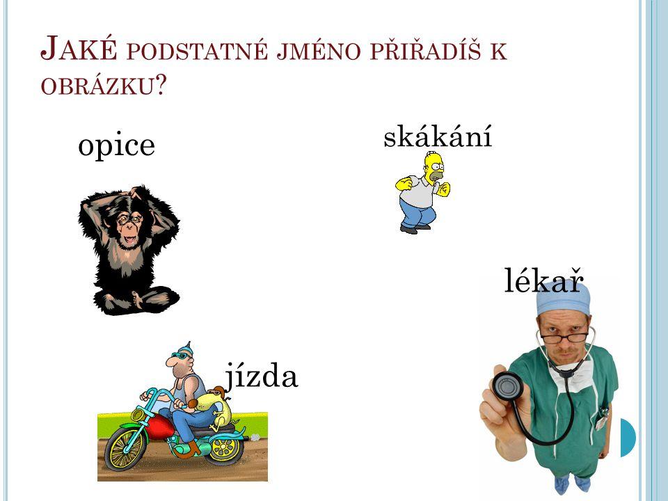 J AKÉ PODSTATNÉ JMÉNO PŘIŘADÍŠ K OBRÁZKU ? opice skákání jízda lékař
