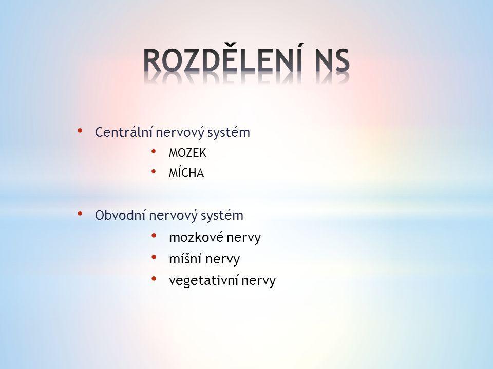 Centrální nervový systém MOZEK MÍCHA Obvodní nervový systém mozkové nervy míšní nervy vegetativní nervy