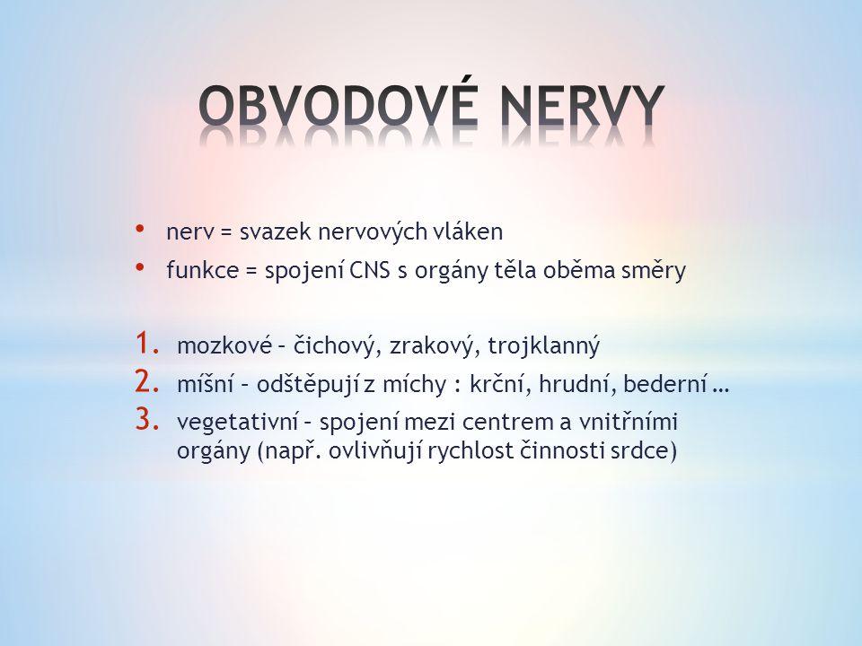 nerv = svazek nervových vláken funkce = spojení CNS s orgány těla oběma směry 1.