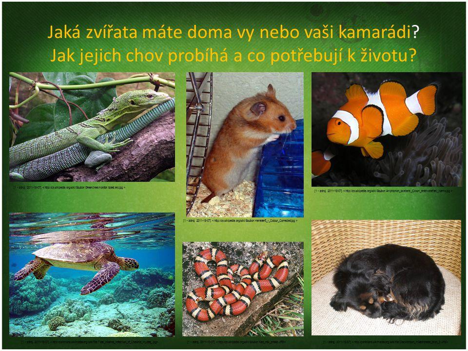 Jaká zvířata máte doma vy nebo vaši kamarádi? Jak jejich chov probíhá a co potřebují k životu? [1 - zdroj. 2011-15-07].