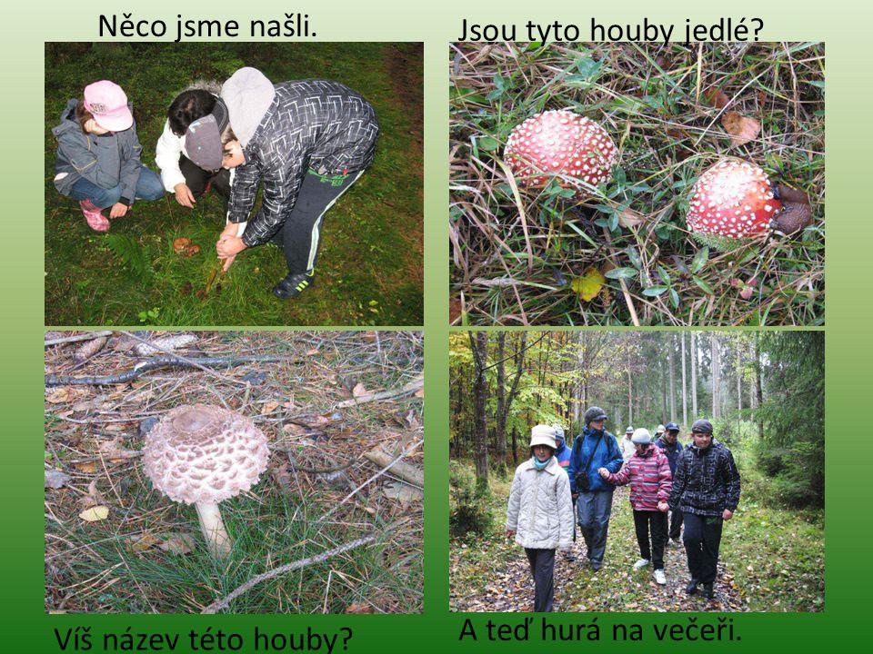 A teď hurá na večeři. Víš název této houby Jsou tyto houby jedlé Něco jsme našli.