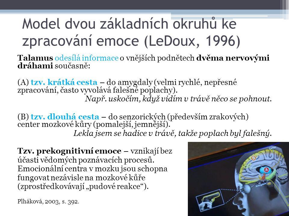 Model dvou základních okruhů ke zpracování emoce (LeDoux, 1996) Talamus odesílá informace o vnějších podnětech dvěma nervovými dráhami současně: (A) t