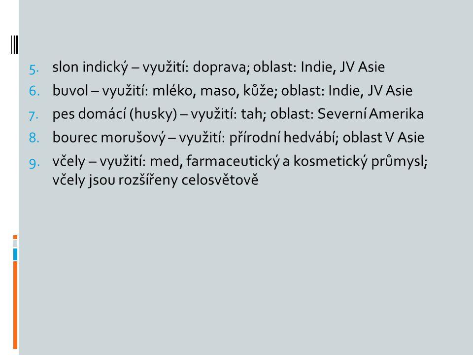5. slon indický – využití: doprava; oblast: Indie, JV Asie 6. buvol – využití: mléko, maso, kůže; oblast: Indie, JV Asie 7. pes domácí (husky) – využi