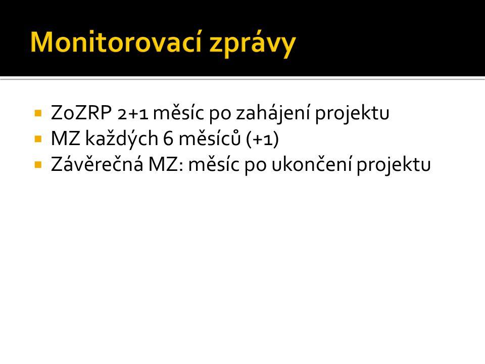  ZoZRP 2+1 měsíc po zahájení projektu  MZ každých 6 měsíců (+1)  Závěrečná MZ: měsíc po ukončení projektu