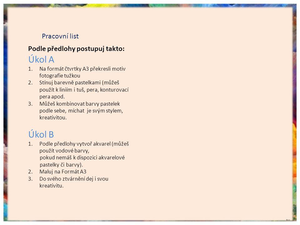 Pracovní list Podle předlohy postupuj takto: Úkol A 1.Na formát čtvrtky A3 překresli motiv fotografie tužkou 2.Stínuj barevně pastelkami (můžeš použít k liniím i tuš, pera, konturovací pera apod.