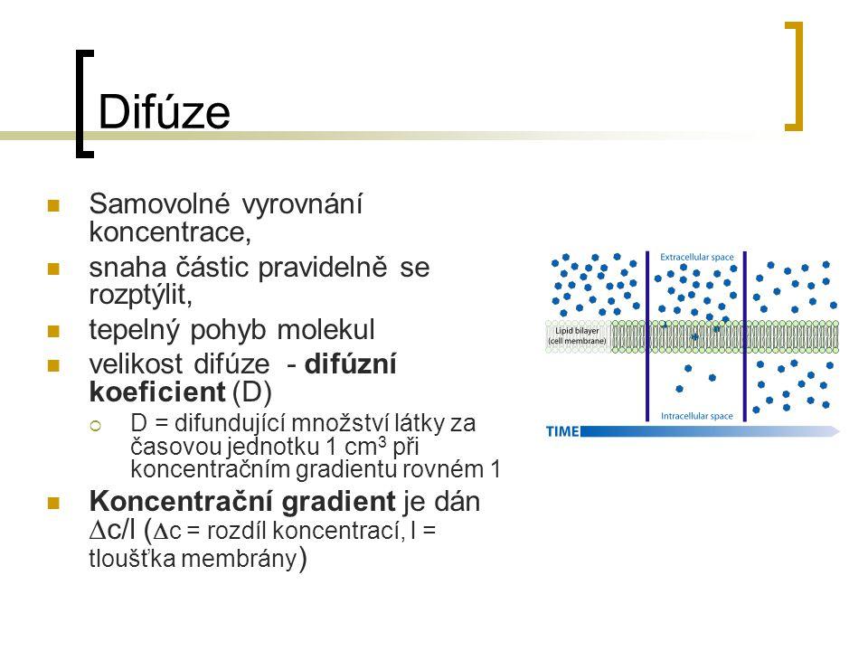 Difúze Samovolné vyrovnání koncentrace, snaha částic pravidelně se rozptýlit, tepelný pohyb molekul velikost difúze - difúzní koeficient (D)  D = dif