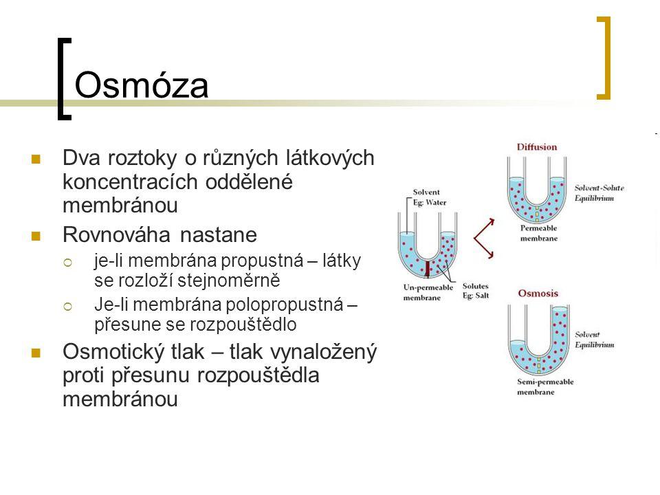 Osmóza Dva roztoky o různých látkových koncentracích oddělené membránou Rovnováha nastane  je-li membrána propustná – látky se rozloží stejnoměrně 
