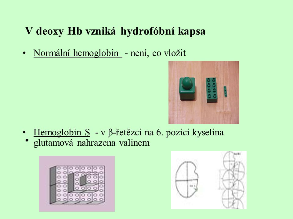 V deoxy Hb vzniká hydrofóbní kapsa Normální hemoglobin - není, co vložit Hemoglobin S - v β-řetězci na 6. pozici kyselina glutamová nahrazena valinem