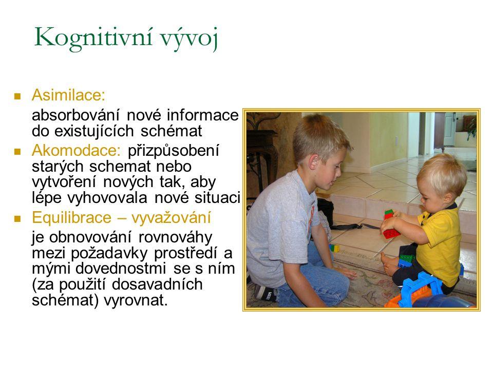 Kognitivní vývoj Piagetova 4 stádia kognitivního vývoje Senzomotorické: až cca 2 roky Předoperační: 2 až 7 let Stádium konkrétních operací: 7 až 11 Stádium formálních operací: od 11 let