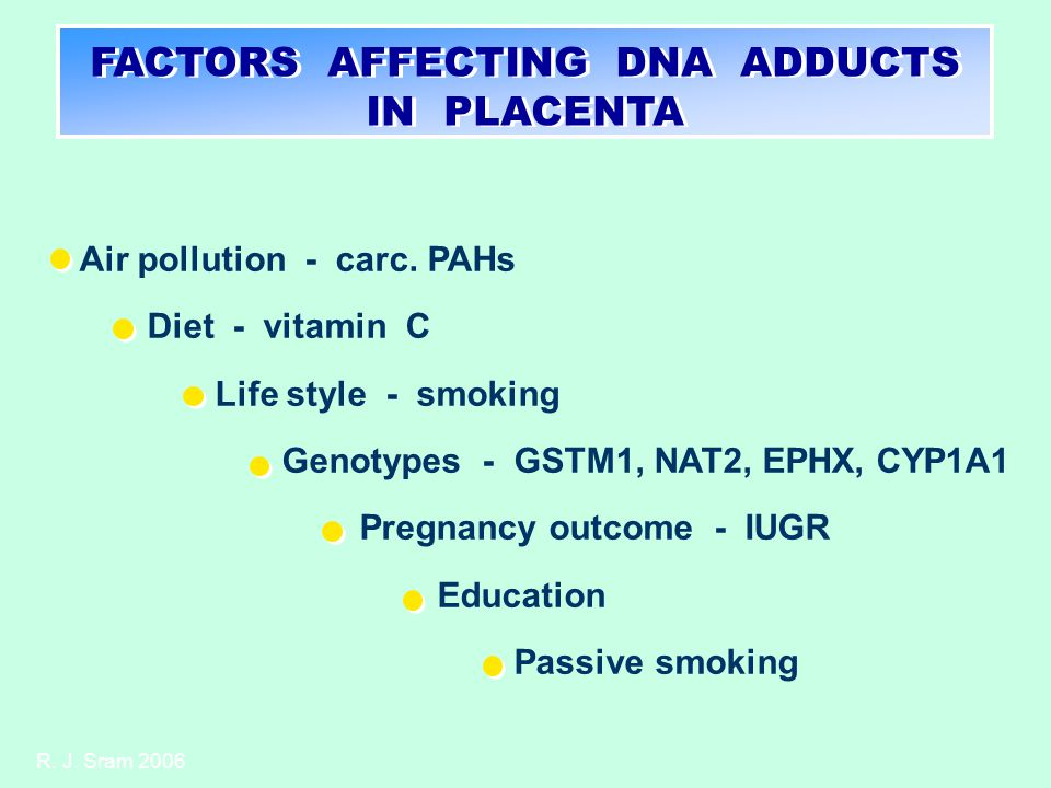FACTORS AFFECTING DNA ADDUCTS IN PLACENTA Air pollution - carc.