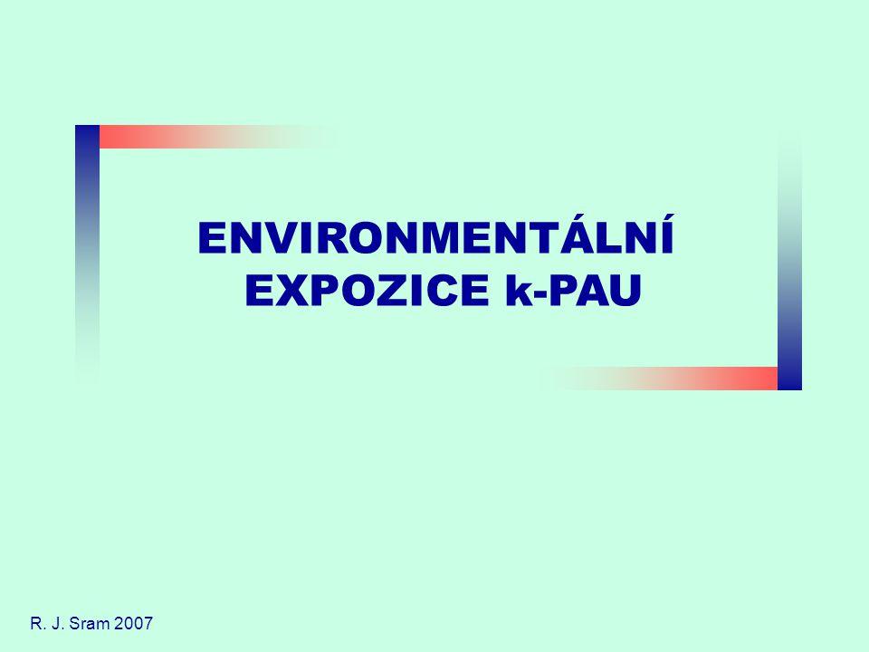 ENVIRONMENTÁLNÍ EXPOZICE k-PAU R. J. Sram 2007