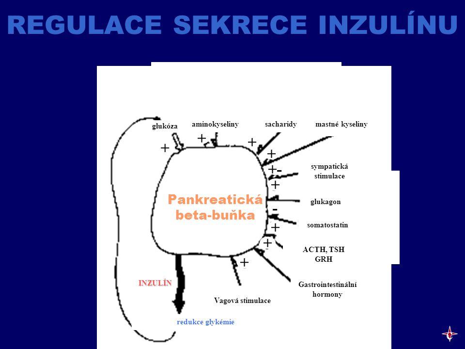 REGULACE SEKRECE INZULÍNU aminokyselinysacharidy mastné kyseliny glukóza sympatická stimulace glukagon somatostatin ACTH, TSH GRH Gastrointestinální h