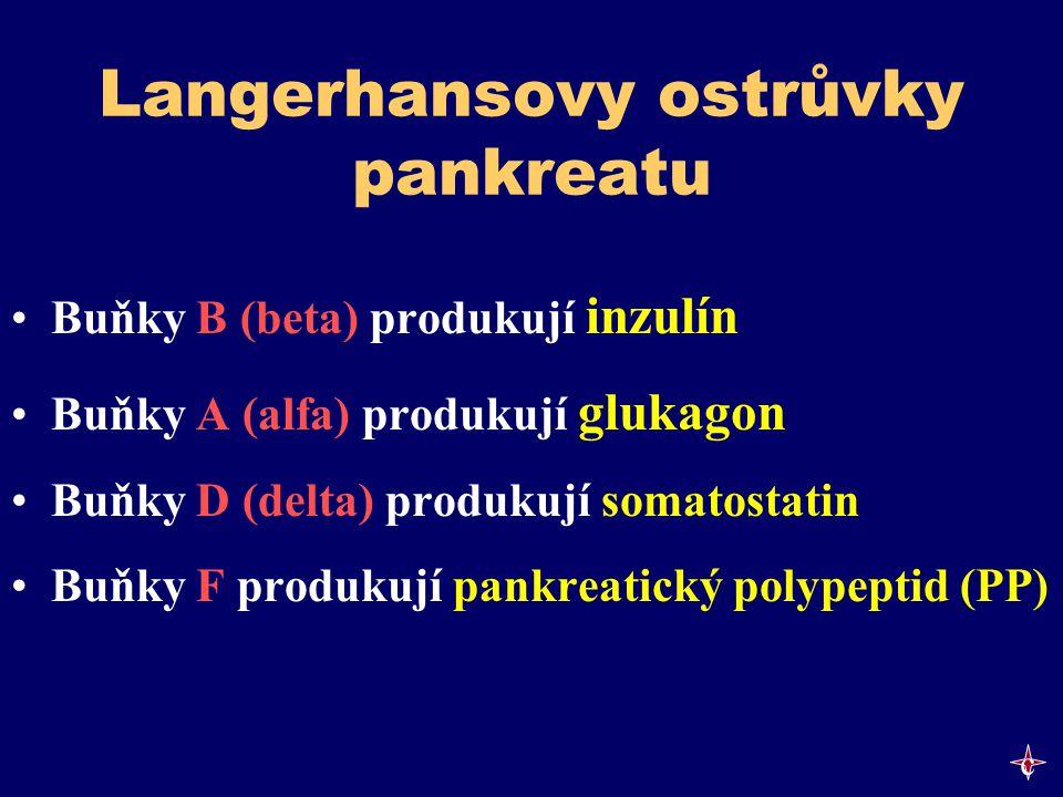 Langerhansovy ostrůvky pankreatu Buňky B (beta) produkují inzulín Buňky A (alfa) produkují glukagon Buňky D (delta) produkují somatostatin Buňky F pro