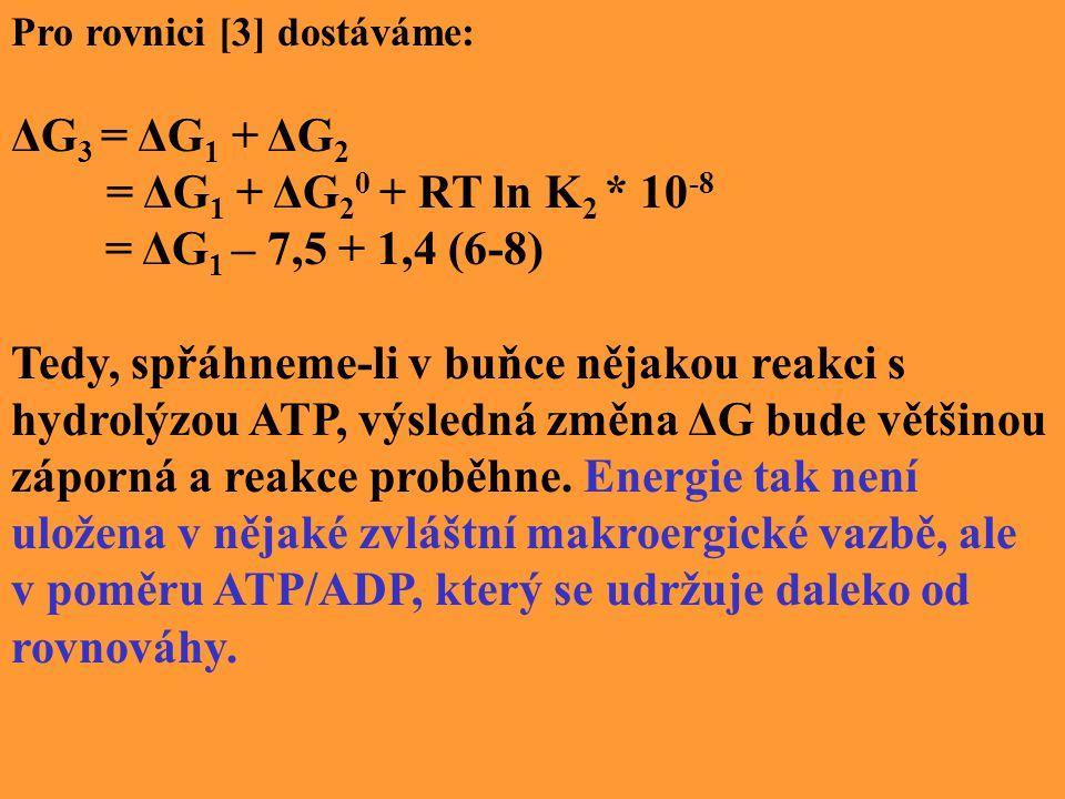 Pro rovnici [3] dostáváme: ΔG 3 = ΔG 1 + ΔG 2 = ΔG 1 + ΔG 2 0 + RT ln K 2 * 10 -8 = ΔG 1 – 7,5 + 1,4 (6-8) Tedy, spřáhneme-li v buňce nějakou reakci s hydrolýzou ATP, výsledná změna ΔG bude většinou záporná a reakce proběhne.