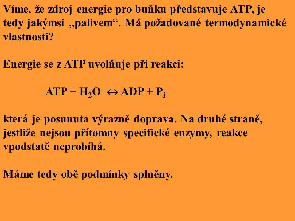 """Víme, že zdroj energie pro buňku představuje ATP, je tedy jakýmsi """"palivem ."""