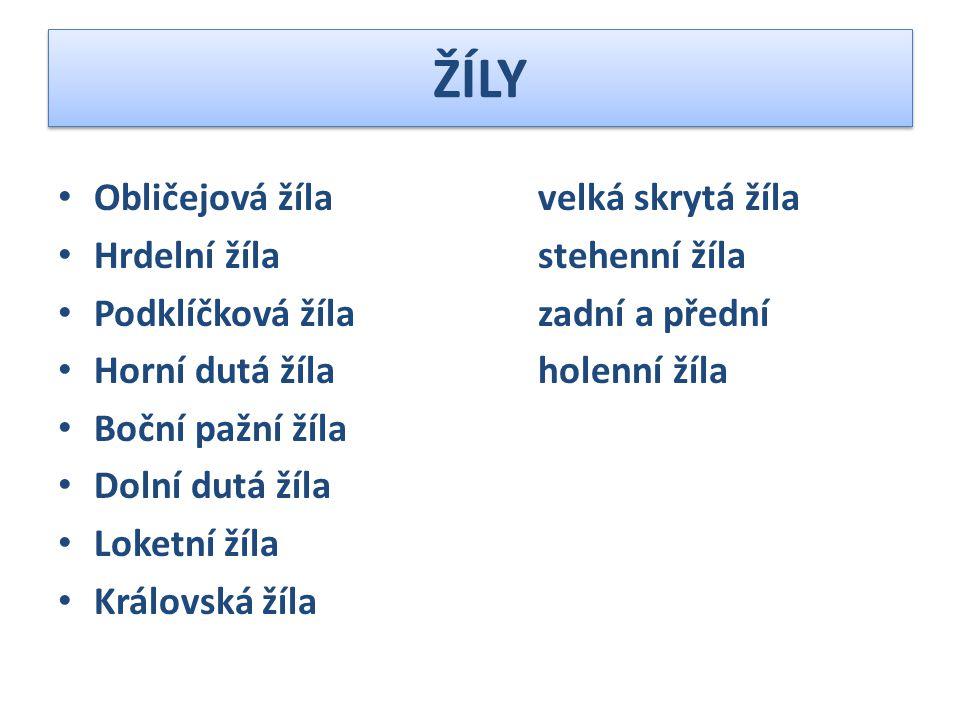 SLEZINA