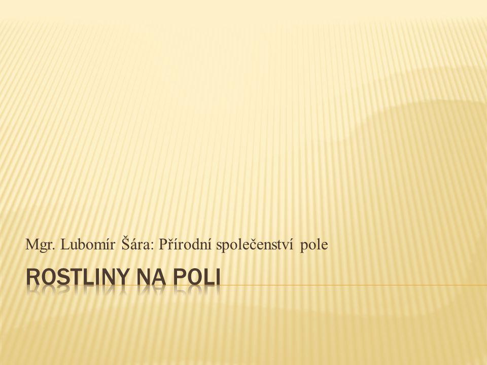 Mgr. Lubomír Šára: Přírodní společenství pole
