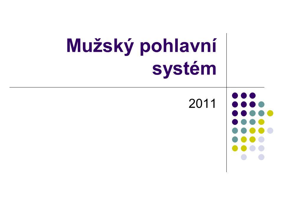 Mužský pohlavní systém 2011