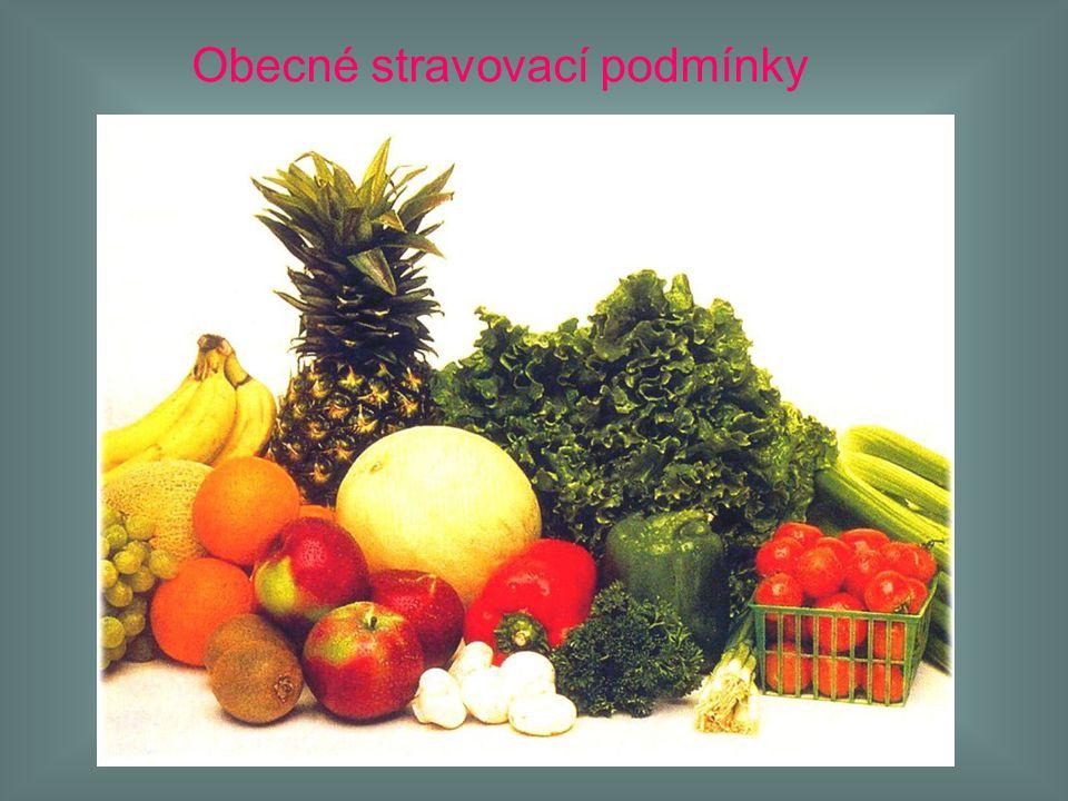 Obecné stravovací podmínky