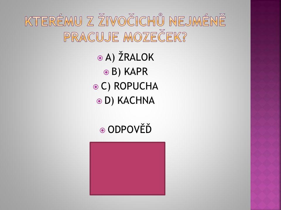  A) ŽRALOK  B) KAPR  C) ROPUCHA  D) KACHNA  ODPOVĚĎ
