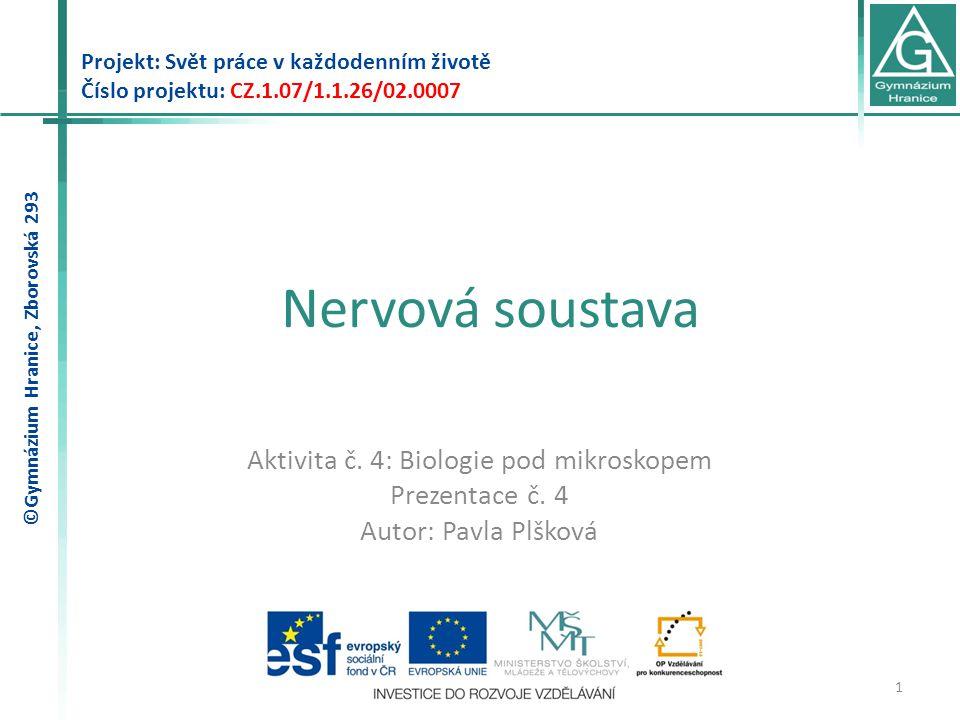 Nervová soustava Projekt: Svět práce v každodenním životě Číslo projektu: CZ.1.07/1.1.26/02.0007 1 Aktivita č.