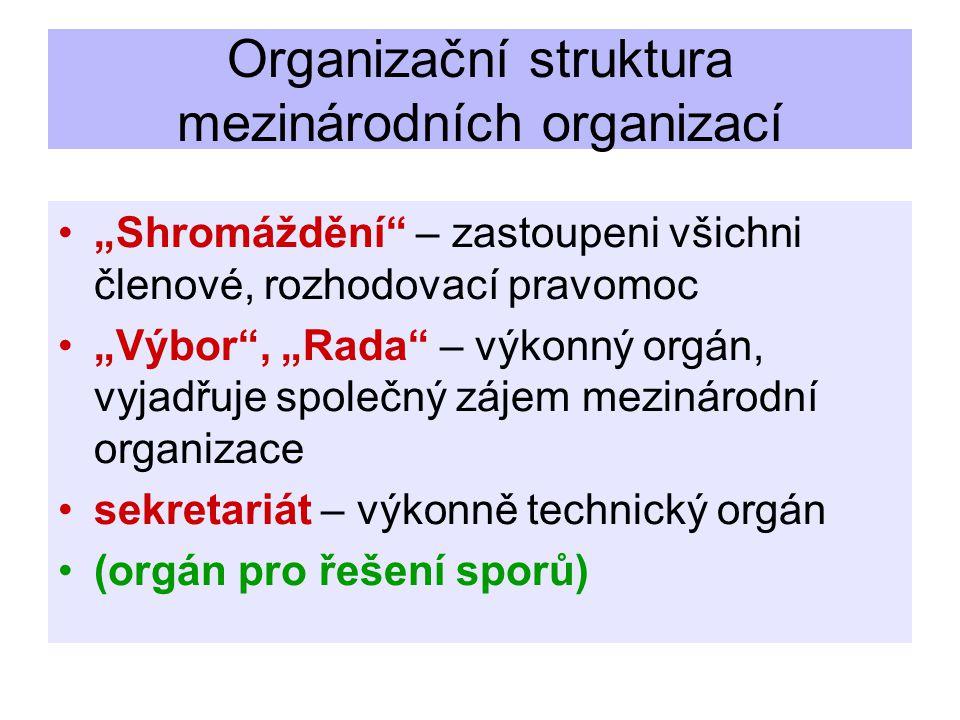 """Organizační struktura mezinárodních organizací """"Shromáždění – zastoupeni všichni členové, rozhodovací pravomoc """"Výbor , """"Rada – výkonný orgán, vyjadřuje společný zájem mezinárodní organizace sekretariát – výkonně technický orgán (orgán pro řešení sporů)"""