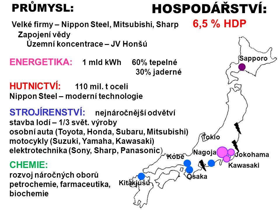 HOSPODÁŘSTVÍ: Velké firmy – Nippon Steel, Mitsubishi, Sharp 6,5 % HDP Zapojení vědy Územní koncentrace – JV Honšú PRŮMYSL: ENERGETIKA: 1 mld kWh 60% t
