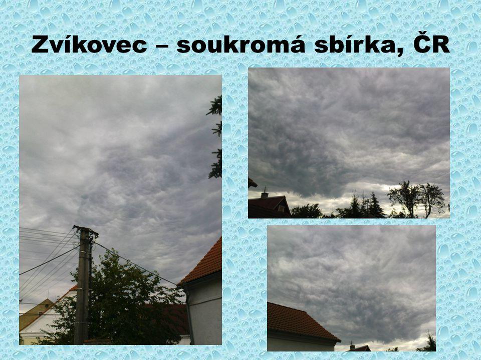 Zvíkovec – soukromá sbírka, ČR