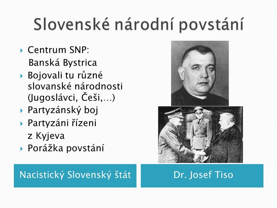 Nacistický Slovenský štátDr.
