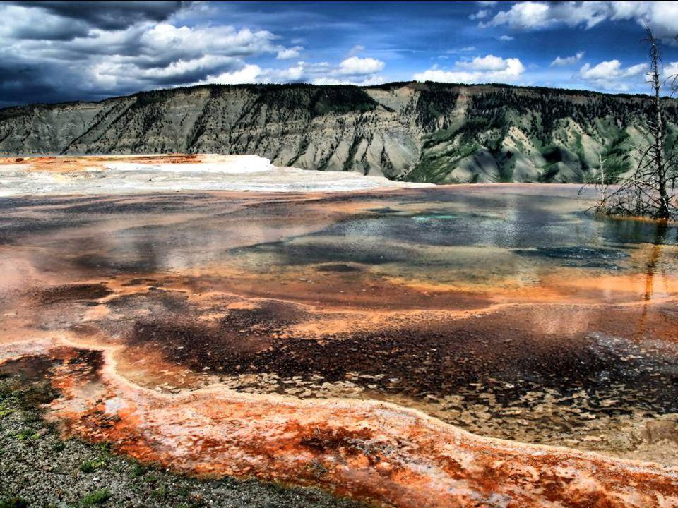 Seizmická aktivita je pečlivě sledována orgány Yellowstone Parku.