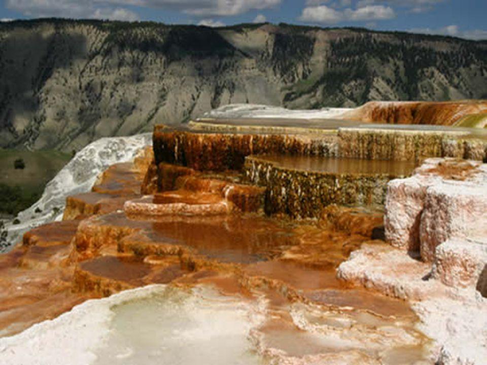 Mammoth Hot Springs jsou jednou z hlavních atrakcí parku.