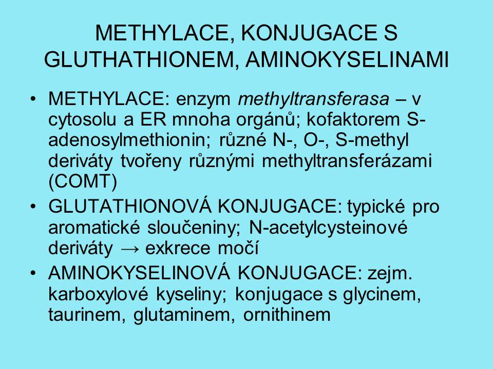 METHYLACE, KONJUGACE S GLUTHATHIONEM, AMINOKYSELINAMI METHYLACE: enzym methyltransferasa – v cytosolu a ER mnoha orgánů; kofaktorem S- adenosylmethionin; různé N-, O-, S-methyl deriváty tvořeny různými methyltransferázami (COMT) GLUTATHIONOVÁ KONJUGACE: typické pro aromatické sloučeniny; N-acetylcysteinové deriváty → exkrece močí AMINOKYSELINOVÁ KONJUGACE: zejm.