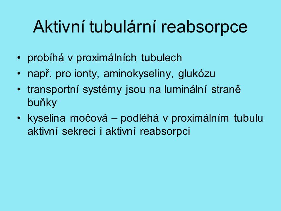 Aktivní tubulární reabsorpce probíhá v proximálních tubulech např.