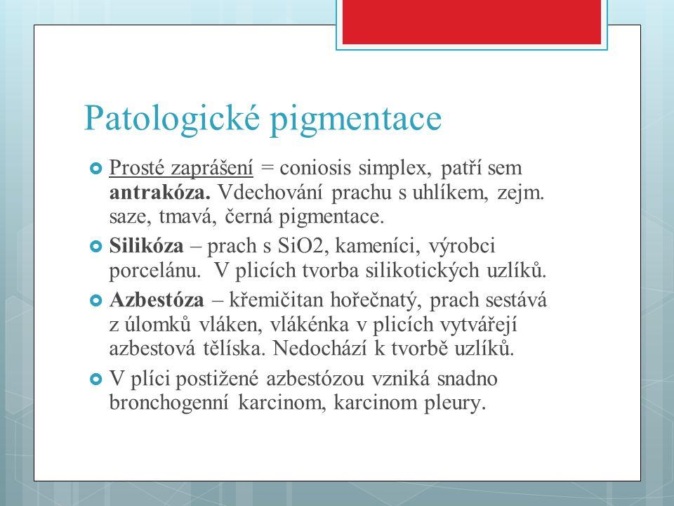 Patologické pigmentace  Prosté zaprášení = coniosis simplex, patří sem antrakóza. Vdechování prachu s uhlíkem, zejm. saze, tmavá, černá pigmentace. 