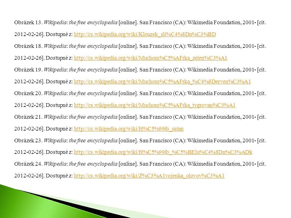 Obrázek 13. Wikipedia: the free encyclopedia [online]. San Francisco (CA): Wikimedia Foundation, 2001- [cit. 2012-02-26]. Dostupné z: http://cs.wikipe