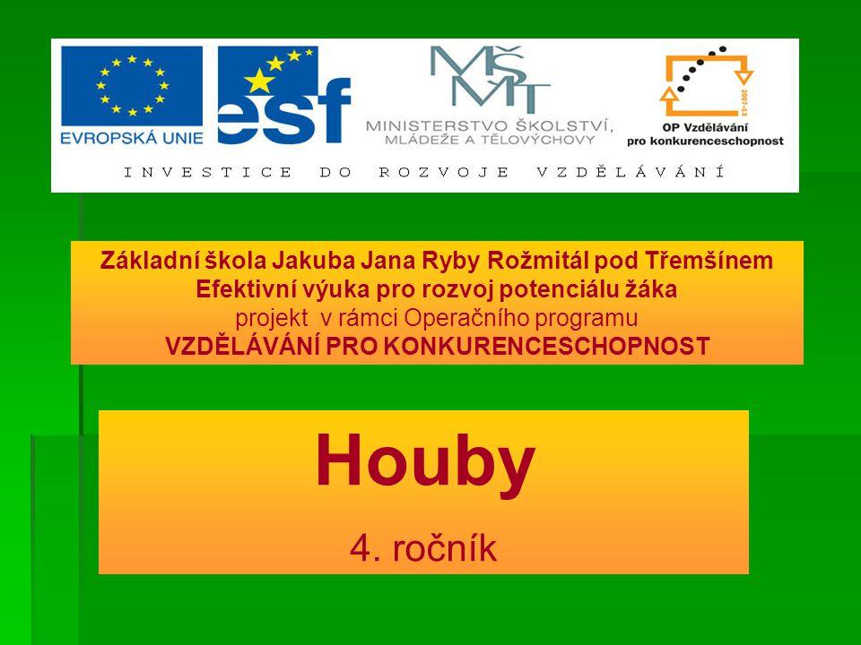 Houby 4.