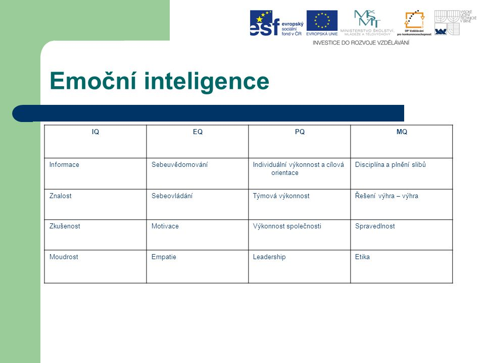 Emoční inteligence IQEQPQMQ InformaceSebeuvědomováníIndividuální výkonnost a cílová orientace Disciplína a plnění slibů ZnalostSebeovládáníTýmová výko