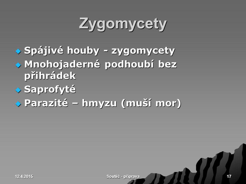 12.4.2015 Soutěž - příprava 17 Zygomycety  Spájivé houby - zygomycety  Mnohojaderné podhoubí bez přihrádek  Saprofyté  Parazité – hmyzu (muší mor)