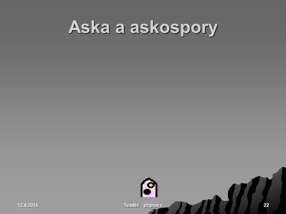 12.4.2015 Soutěž - příprava 22 Aska a askospory